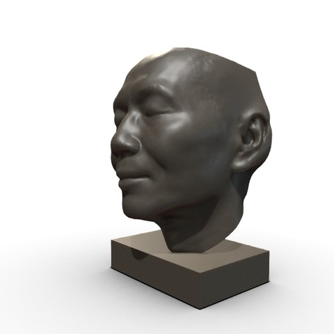 Free STL file My face, MWopus