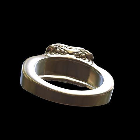 Punk rings by mwopus - 3D model - Sketchfab20180119-005877.jpg Download STL file Punk rings • 3D printable template, MWopus