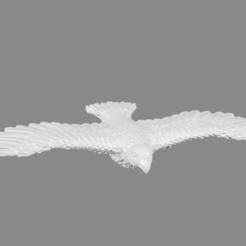hawks_thingiverse_picture.png Télécharger fichier STL gratuit Foxmen : Faucon géant miniature • Design à imprimer en 3D, Ilhadiel