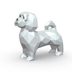 1.jpg Download 3DS file Maltese dog 2 • 3D printable model, stiv_3d