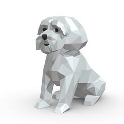 1.jpg Download 3DS file Maltese dog  • 3D printable template, stiv_3d