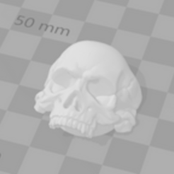 Capture.PNG Download STL file Skull nut cover • 3D printable template, alsyblou40