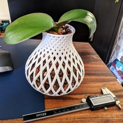 Télécharger fichier impression 3D Lampe et vase, pdukes3