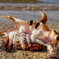 Download free 3D printing designs Hugging Crab Ring(s), KaziToad