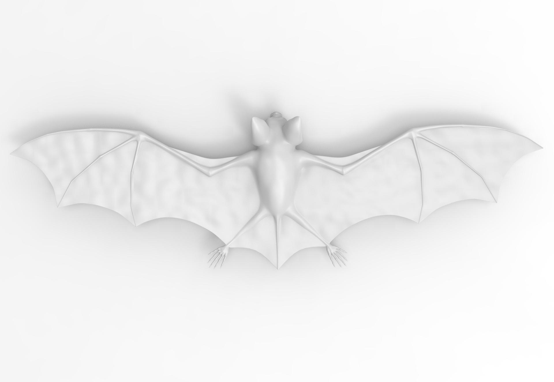 untitled.118.jpg Télécharger fichier OBJ gratuit Bat • Design à imprimer en 3D, vaibhav210singh