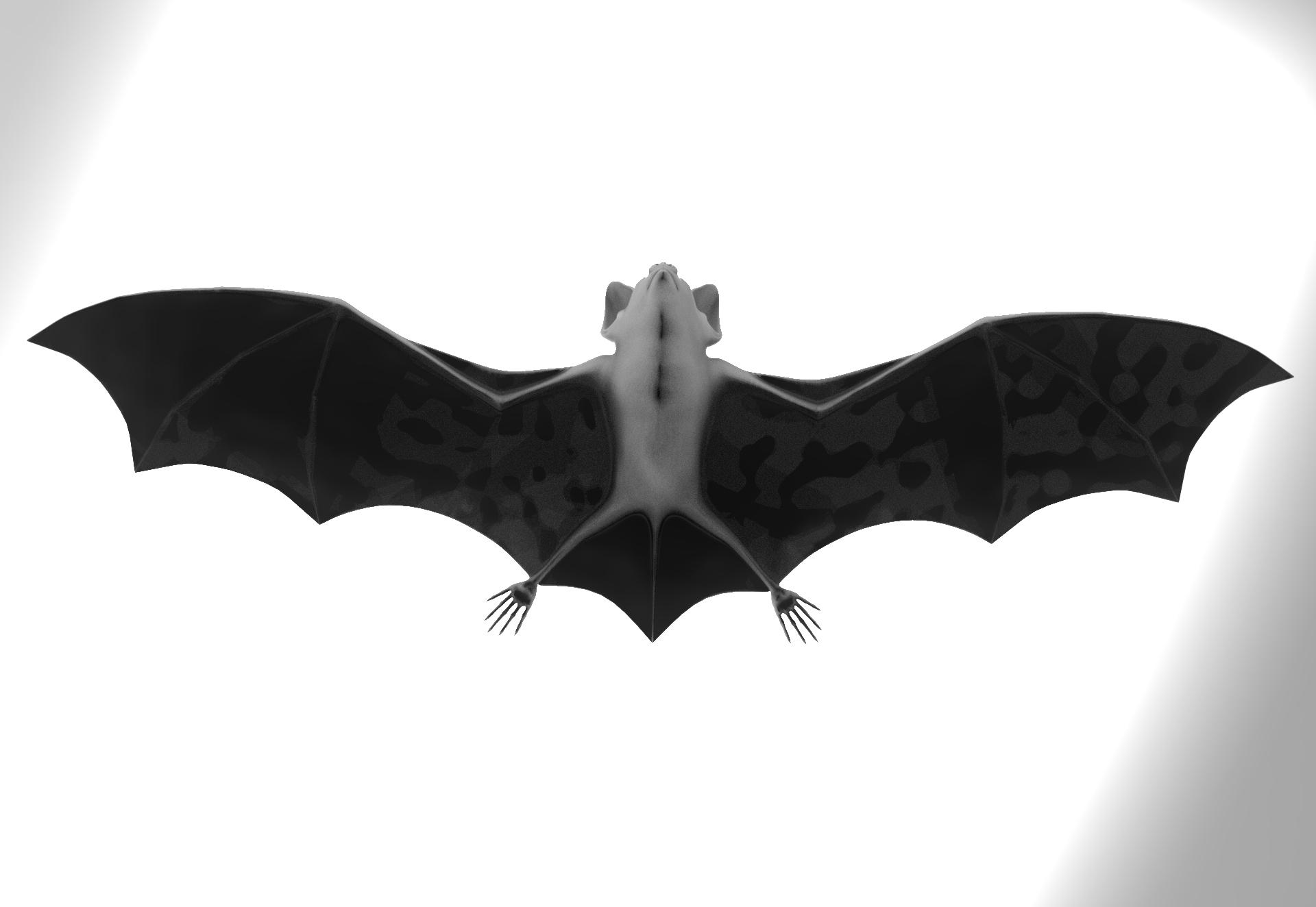untitled.119.jpg Télécharger fichier OBJ gratuit Bat • Design à imprimer en 3D, vaibhav210singh