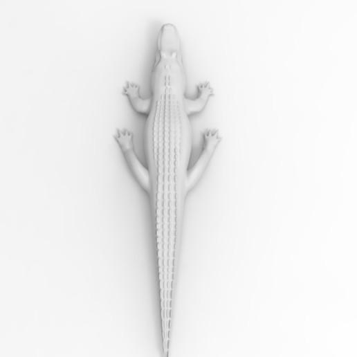 untitled.92.jpg Télécharger fichier OBJ gratuit alligator • Objet à imprimer en 3D, vaibhav210singh