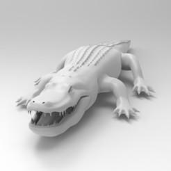 Télécharger fichier OBJ gratuit alligator • Objet à imprimer en 3D, vaibhav210singh