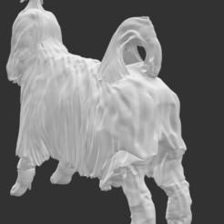 Descargar archivo 3D shitzu, mimaemilia