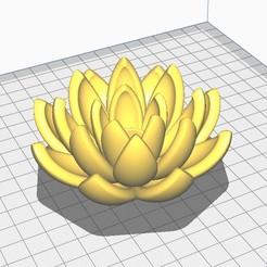 Flor.jpg Descargar archivo STL Flor de Loto, Lotus,  Lotus flower • Objeto para imprimir en 3D, santiagocgart
