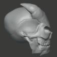 Télécharger fichier STL gratuit Crâne de démon • Modèle pour impression 3D, FenixYeshua