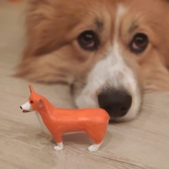 Download free STL file Welsh Corgi Pembroke Dog Statuette • Design to 3D print, positron
