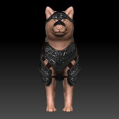 Front.jpg Download OBJ file Armored Doggo companion / Armored Dog  • Design to 3D print, VnBArt