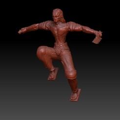 Rogue-Assassin.jpg Download OBJ file Ninja Assassin Rogue  • 3D printable model, VnBArt