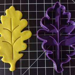 IMG_20201012_140042.jpg Download STL file Fall Season Cookie Cutter • Design to 3D print, cesarlua92