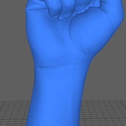 fistscreen.PNG Download STL file 3d scan hand fist • 3D printing object, Nilssen3DService