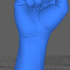 Descargar archivos 3D Puño de mano con escáner 3D, Nilssen3DService