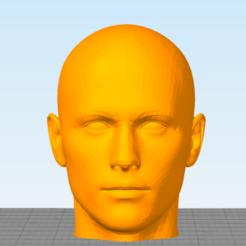 Télécharger fichier STL 3d scan face • Plan à imprimer en 3D, Nilssen3DService
