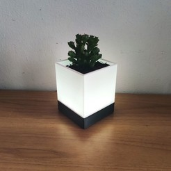 IMG_20201007_140847.jpg Download STL file LED Lamp Succulent planter • 3D printer template, EnginEli
