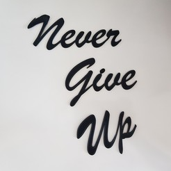 "20200612_153124.jpg Download free 3MF file ""Never Give Up"" Sculpture • 3D print object, 3dukkani"