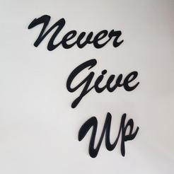"Download free 3D printer designs ""Never Give Up"" Sculpture, 3dukkani"