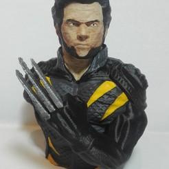 Download STL file Wolverine bust, johnnydip