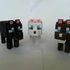 20210117_103133.jpg Télécharger fichier STL Chien de Minecraft • Plan pour imprimante 3D, Coufikus