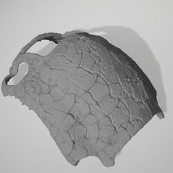 asterius carapace_pic.jpg Télécharger fichier STL gratuit La carapace de l'échelle du guerrier Sterius en érable la plus imposante • Design pour imprimante 3D, outrageousbplus