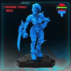 005_Cyberpunk_Female_Rogue.jpg Download STL file Cyberpunk Female Rogue • 3D printer template, Papsikels