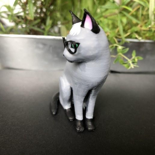 IMG_5725.jpg Télécharger fichier STL gratuit Réaliste Raymond Cat - Animal Crossing • Plan pour imprimante 3D, skelei
