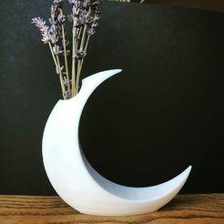 moon 1.jpg Télécharger fichier STL gratuit Vase lunaire minimaliste • Plan à imprimer en 3D, skelei