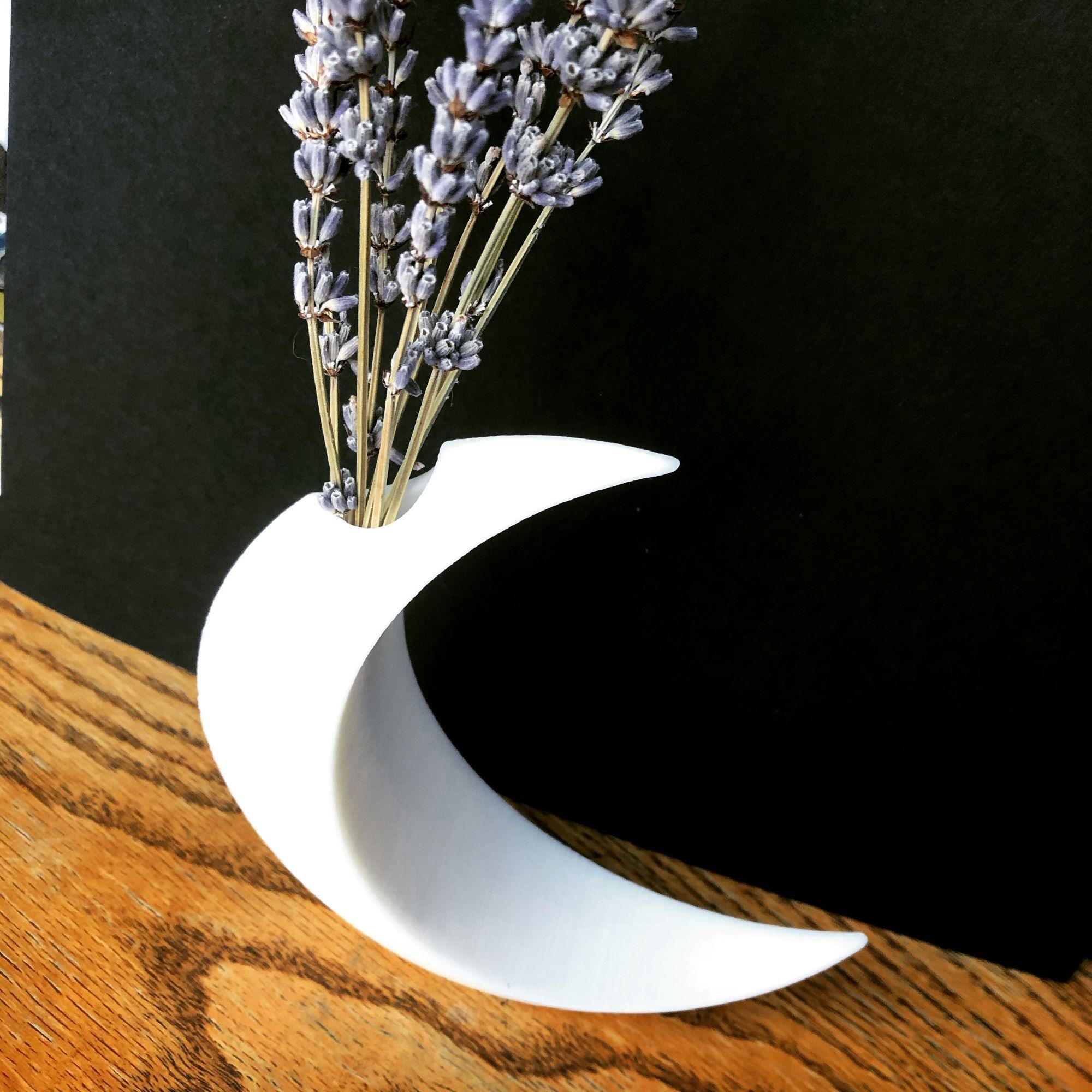 moon 2.jpg Download free STL file Minimalist Moon Vase • Object to 3D print, skelei