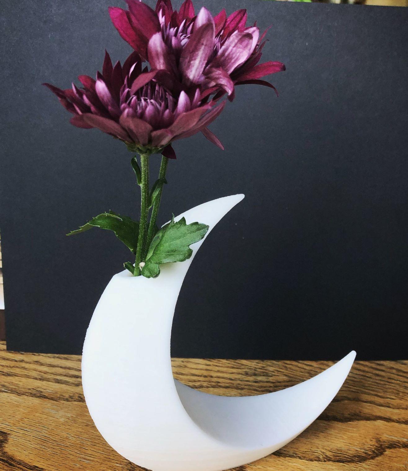 moon 4.jpg Download free STL file Minimalist Moon Vase • Object to 3D print, skelei