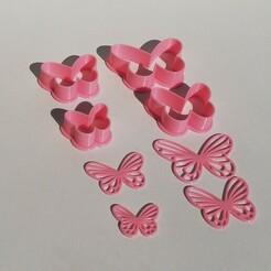 IMG_20210107_170647.jpg Download STL file Butterfly • 3D printer model, DusPrint