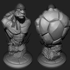 Cover.jpg Télécharger fichier OBJ Fan art de Raphaël • Plan à imprimer en 3D, Sharry