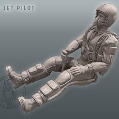 Descargar STL Piloto de jets 3D, MaxGrueter