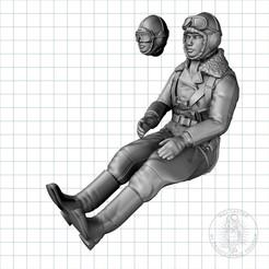 CGTrader0014.jpg Download STL file CCCP Female Pilot • 3D printer template, MaxGrueter