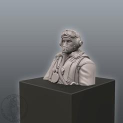 Descargar modelos 3D Busto del piloto de la RAF, MaxGrueter
