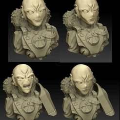NewCanvas9.jpg Download free OBJ file Commander Snowmane Bust and heads • Model to 3D print, El_Mutanto
