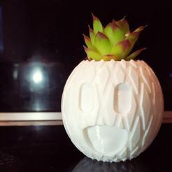 Download 3D printer designs Pineapple pot, _n3o_