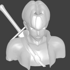 Trunks.jpg Download free STL file Trunks Bust • 3D printable template, AwesomeA
