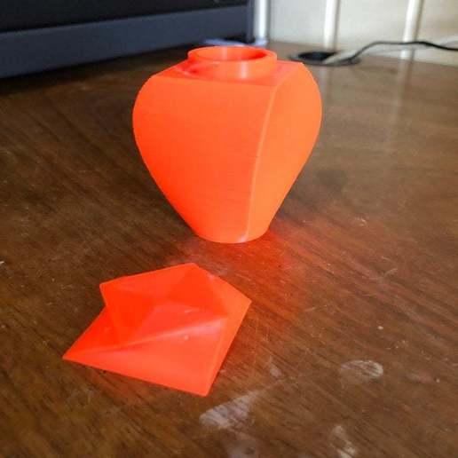 IMG_4640.jpg Télécharger fichier STL gratuit Conteneur Lofted • Modèle pour imprimante 3D, 3degon