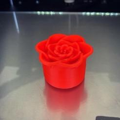057BE673-2C2B-45C2-8C70-1322C6BB904D.jpg Download STL file Small Flower Container • 3D printable model, Hegonauta3D