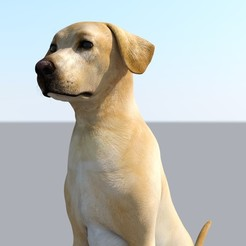 d dog 2.jpg Download free STL file Labrador Dog Realistic Pet Lovers Gift Free Stl  • 3D printing template, samlyn696