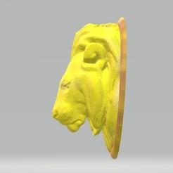 lion head 1.jpg Télécharger fichier STL gratuit Tête de lion basse Poly • Design à imprimer en 3D, samlyn696