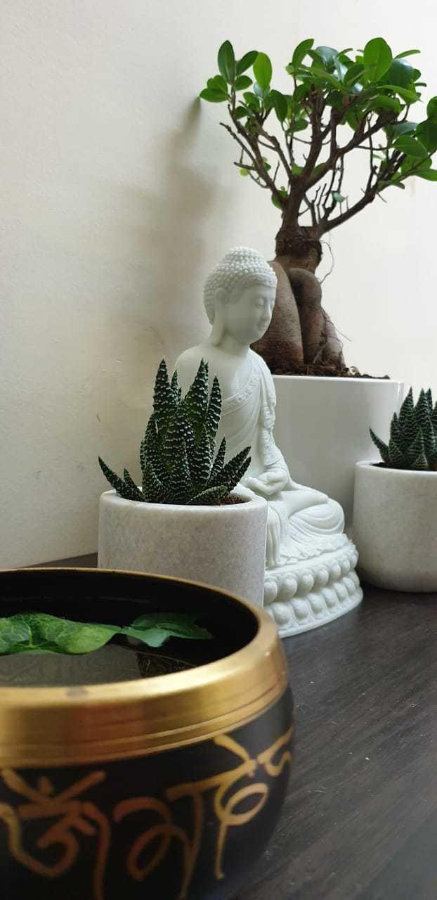 Download free OBJ file Thai Buddha Edited - Error Free - Statue Sculpture • 3D printer object, samlyn696