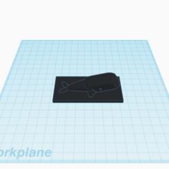Télécharger fichier STL gratuit Baleine, shantanudover