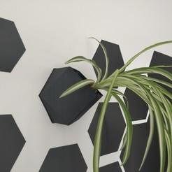 Download STL Hexagonal magnetic wall-mounted pot / vase, Dhemonaq