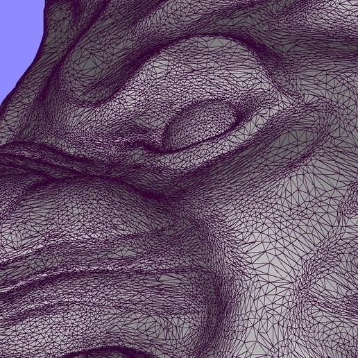 Screenshot_8.jpg Télécharger fichier STL gratuit Bague de lion Bijoux d'homme • Modèle pour imprimante 3D, Cadagency