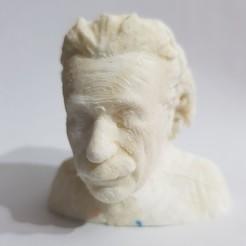 20201116_182325.jpg Download STL file Albert Einstein Bust Mold • Object to 3D print, rabotilnicata